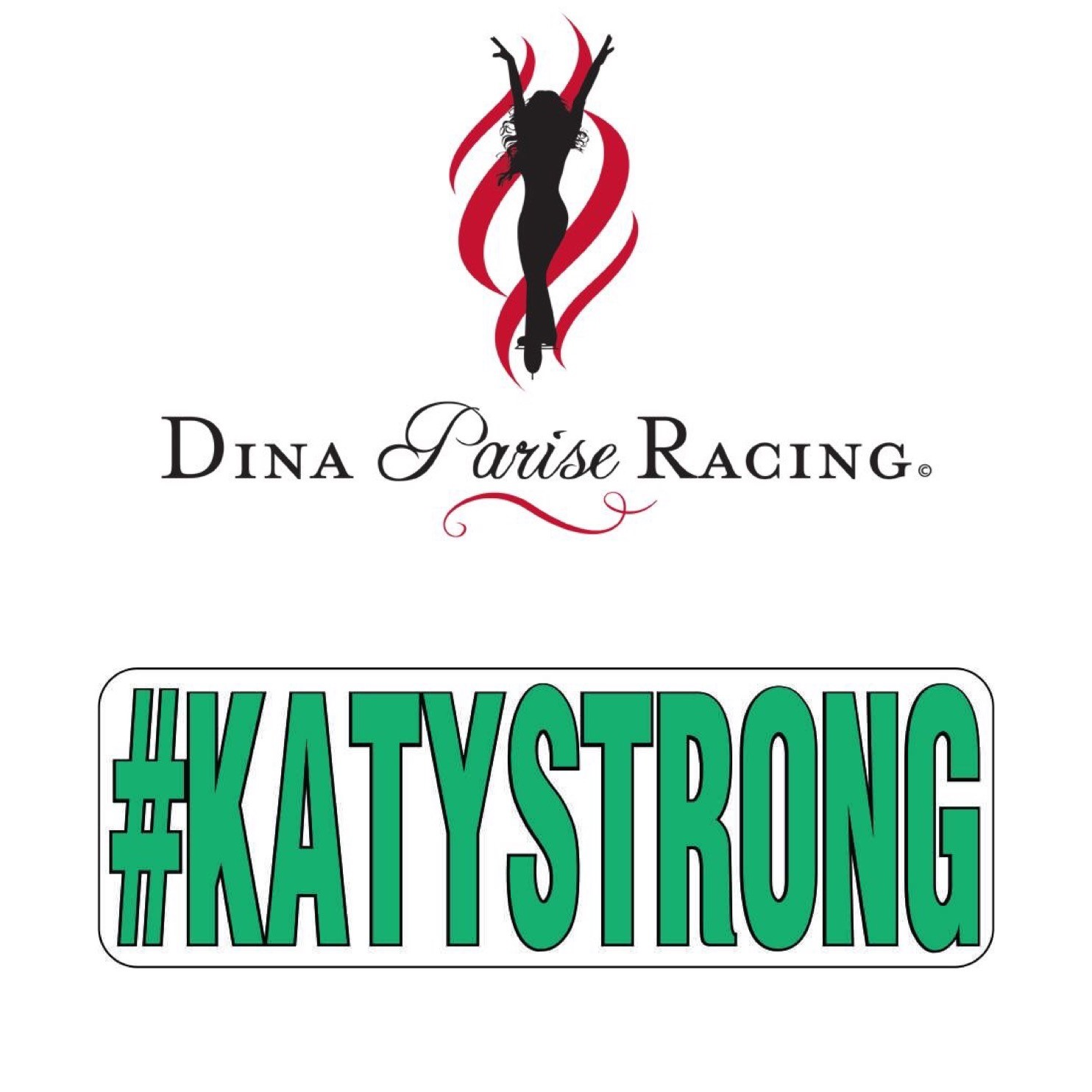 Dina Parise Racing races to support injured Virginia girl with Unique Fundraiser