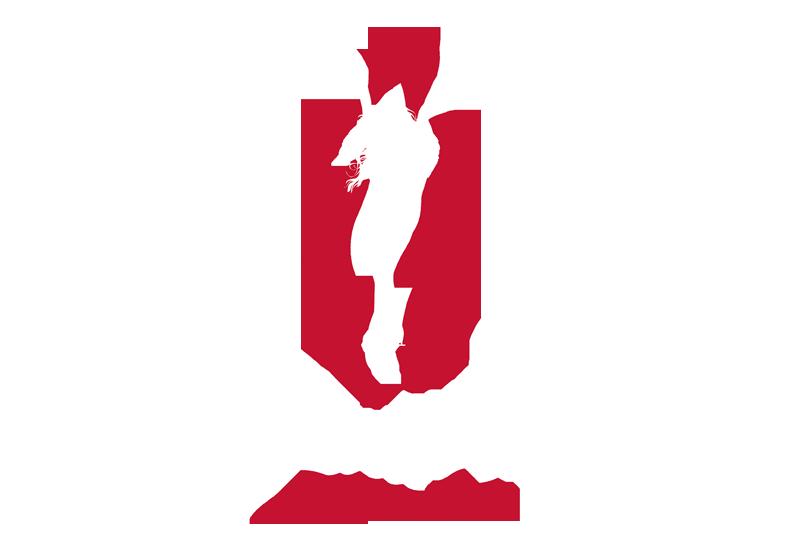 Athlete's Voices: Dina Parise Episode 11, You've Come a Long Way Ladies!